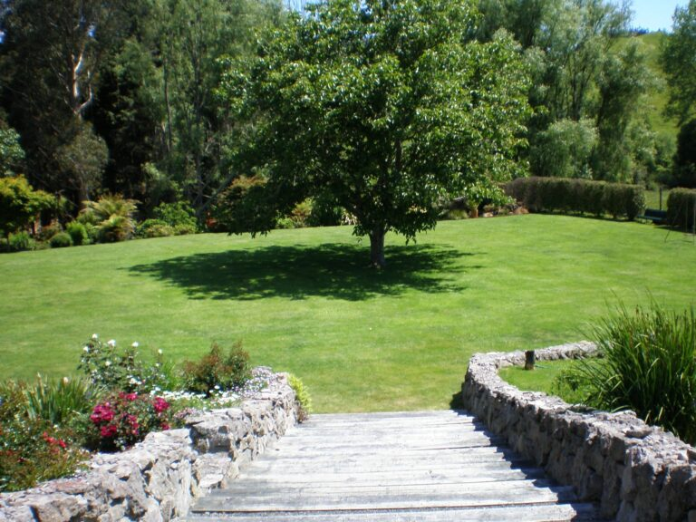 Paradise Valley Lodge Garden